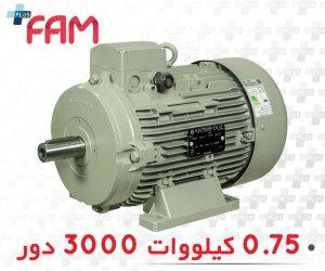الکتروموتور الکتروژن 0.75 کیلووات 3000 دور