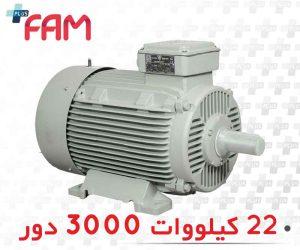 الکتروموتور موتوژن 22 کیلووات 3000 دو
